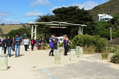 Imagen Full-Day Great Ocean Road Tour from Melbourne