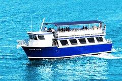 Actividades,Actividades acuáticas,Crucero por la Bahía Biscayne