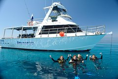 Imagen Great Barrier Reef Dive and Snorkel Cruise from Townsville or Magnetic Island