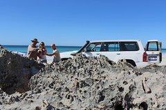 Imagen Two Day Best of Kangaroo Island 4WD Tour