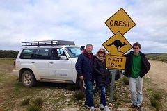 Imagen Kangaroo Island 4WD Full-Day Tour - Seal Bay