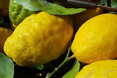 Limoncello Making and lunch with lemon base