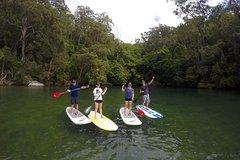 Imagen Sydney to Ku-ring-gai Wildlife Adventure Tour