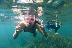 Imagen Manly Snorkeling Tour and Nature Walk