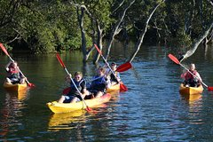 Imagen Kayak and SUP Guided Tours