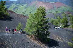 Small-group North Etna Tour by 4x4 Jeep