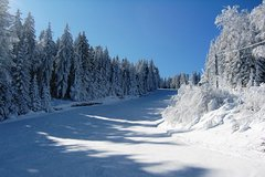 Imagen Private Arrival Transfer from Sofia Airport to Borovets or Bansko