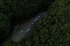 Activities,Activities,Activities,Water activities,Water activities,Adventure activities,Nature excursions,Sports,Sports,Bioluminescent Bay kayaking