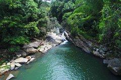 Salir de la ciudad,Actividades,Excursiones de un día,Salidas a la naturaleza,Excursión a Parque Nacional El Yunque