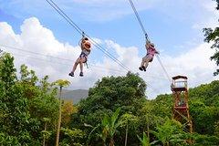 Activities,Activities,Activities,Adventure activities,Adventure activities,Adrenalin rush,Nature excursions,Nature excursions,Excursion to El Yunque National Park,Zipline Adventure