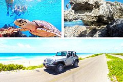 City tours,Activities,Tours with private guide,Adventure activities,Adrenalin rush,Specials,