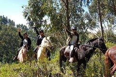 Imagen Half day Horseback Riding tour around Sacsayhuaman