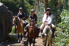 Imagen Horseback Riding Tour to Sacsayhuaman, Quenqo, Puka Pucara and Tambomachay
