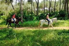 Imagen Horse Riding Excursion from Seville