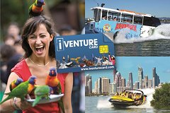City tours,Tickets, museums, attractions,City passes,Major attractions tickets,Koala Sanctuary