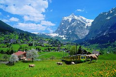 Excursions,Excursions,Multi-day excursions,Multi-day excursions,Excursion to Jungfraujoch,Zurich Tour,Excursion to Interlaken,Excursion to Grindelwald