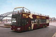 Imagen Sydney Shore Excursion:  Big Bus Sydney and Bondi Hop-On Hop-Off Tour
