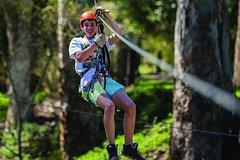 Trees Adventure - Tree Ropes & Zipline Experience