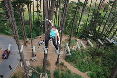 Imagen Adrenalin Forest Obstacle Course in the Bay of Plenty