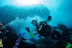 Imagen 7 Days Diving and Hiking on the Galapagos Islands