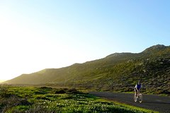 Cape Peninsula Guided Road Bike Day Tour departing from Cape Town