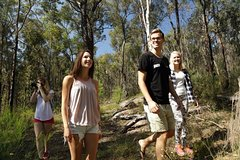 Imagen Private Blue Mountains Day Trip by 4WD from Sydney or the Blue Mountains