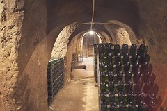 Zagarolo, Learn a new tasting approach in a family winery