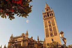Ver la ciudad,Ver la ciudad,Ver la ciudad,Salir de la ciudad,Tours andando,Tours de un día completo,Excursiones de un día,Tour por Sevilla
