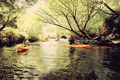 Imagen Paddle with the Platypus Kayak Adventure