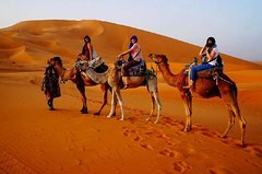 City tours,Excursions,Tours with private guide,Multi-day excursions,Specials,Excursión to the desert
