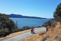 City tours,Excursions,Bike tours,Multi-day excursions,