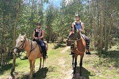 Imagen HORSEBACK RIDING FULL DAY AROUND SACSAYHUAMAN