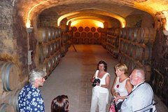 City tours,Gastronomy,Gastronomic tours,Gastronomic tours,