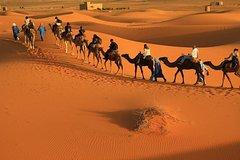City tours,Theme tours,Historical & Cultural tours,Excursion to Essaouira
