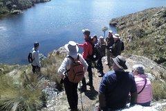 Imagen Cajas National Park Private Day Tour
