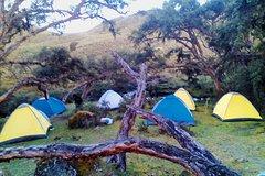 Imagen Camping Tour Cajas National Park