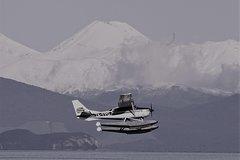 Imagen Mt Ruapehu Vista