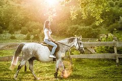 Horseback Riding Tour with wine tasting from Siena