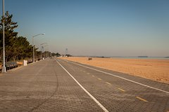 Miles of Beaches: Staten Island East Shore Private Tour