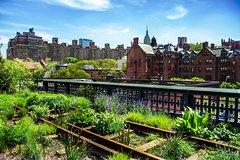 Imagen Recorrido a pie para grupos pequeños por el mercado de Chelsea, el distrito de carnicerías industriales y el High Line en Nueva York