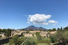 Skip the line: Full price for private Pompeii with an Archeologist/Tourist Guide