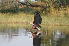 6 days Victoria Falls, Chobe, Savuti