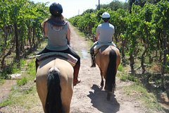 Imagen Horseback ride through vineyards followed by gourmet winery lunch