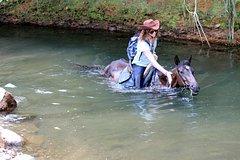 Imagen Horseback Riding - Experience A Unique Natural Adventure On Horseback