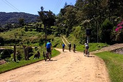 Imagen Mountain Bike Tour - Ride And Discover Our Beautiful Mountains