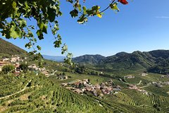 A sparkling day in the Prosecco Hills