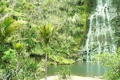 Imagen Waterfalls & Wines sightseeing & wine tasting combination day tour