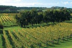 Imagen Volcanoes, Vines & Wines Day Tour from Auckland