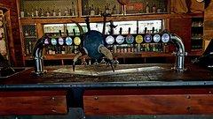 Imagen Craft Beer Taste your way through the Bays Best Breweries