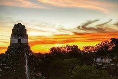 Tikal Early Experience !